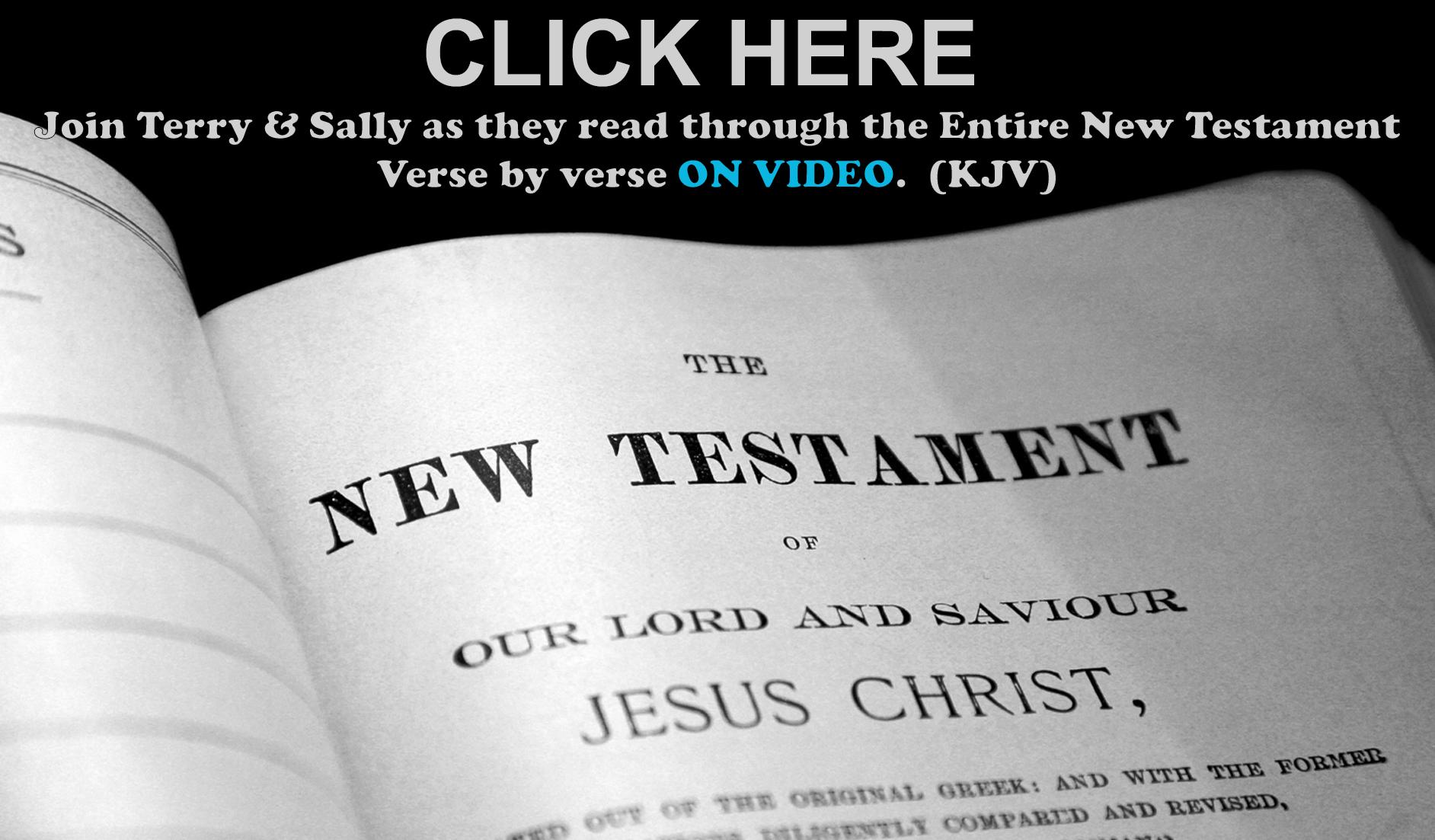 NT Bible
